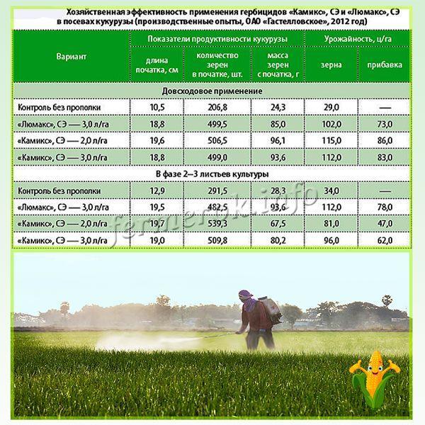 Эффективность применения гербицидов