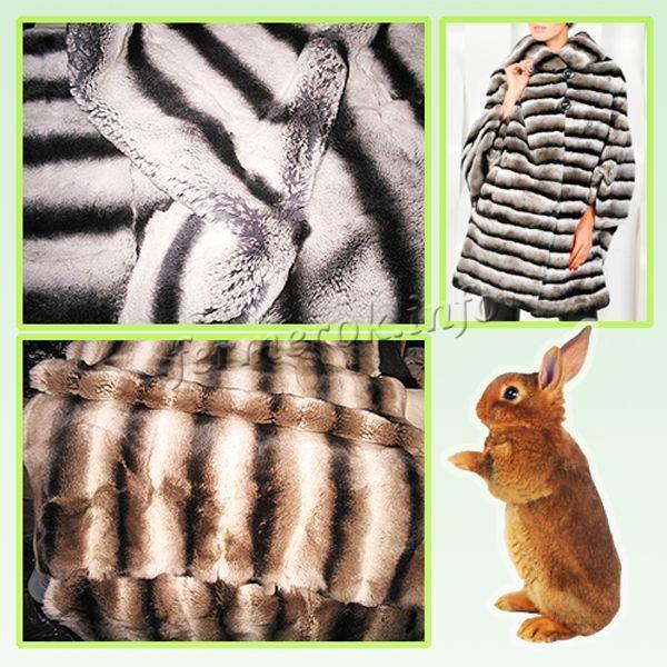 Главное качество – прекрасный мех кролей породы Рекс