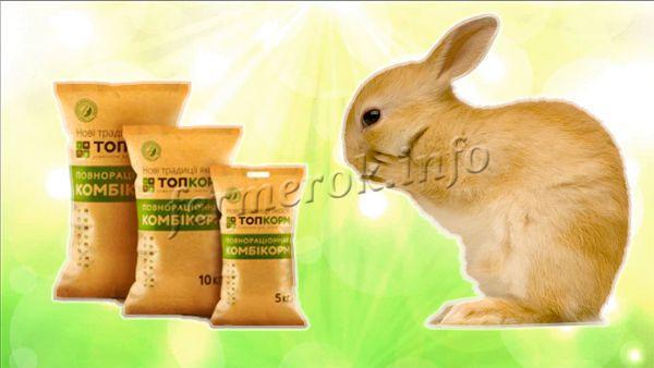 Молодых кролей кормят теми же продуктами что и взрослых особей, только дают комбикорм именно для молодняка