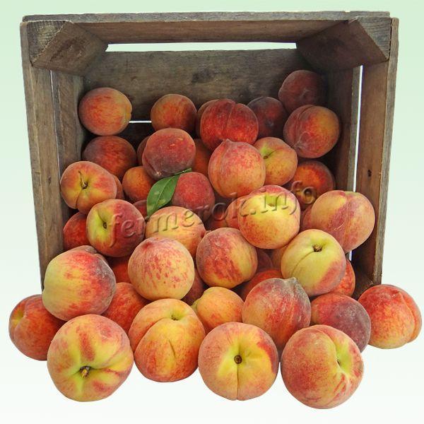 Персики сорта Золотой юбилей имеют отличные товарные качества