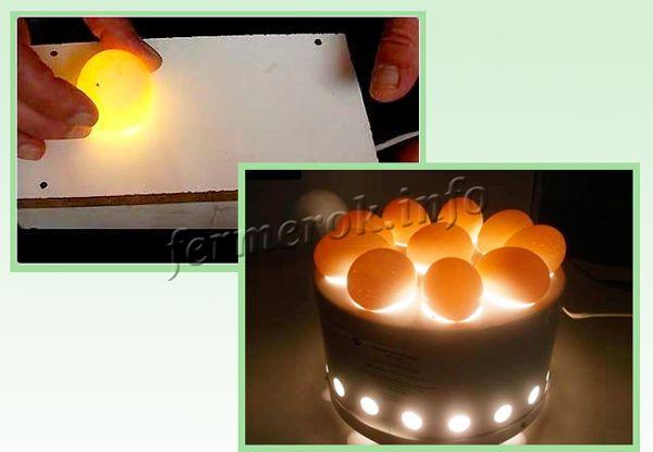 Овоскоп для проверки яиц