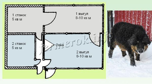 План свинарника на 2 головы