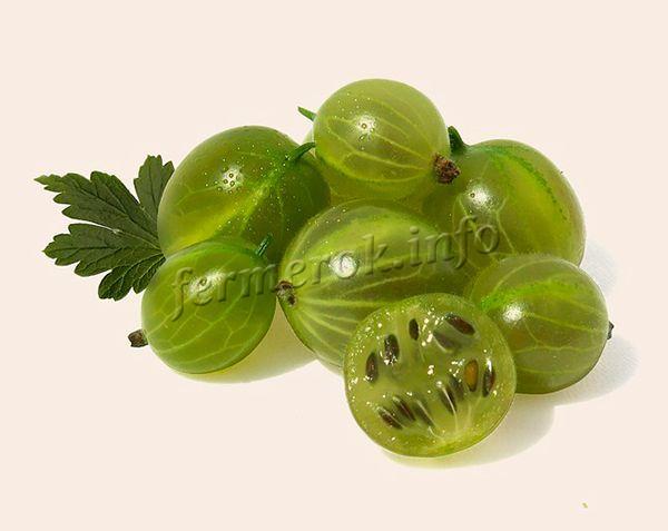 Плоды до 5 см в диаметре, вес – 6-8 г, округлые, зеленого цвета