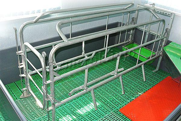 Правильная конструкция станок во многом упростит уход за свиньей