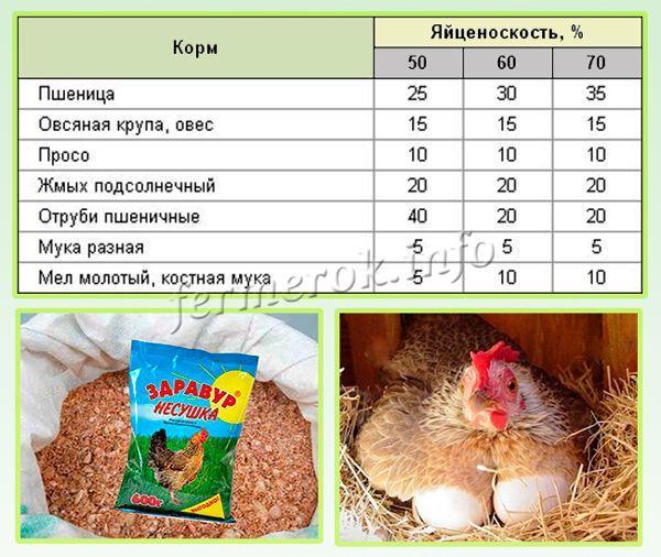 Рацион для кур несушек массой 1,8 кг (граммов  в сутки)