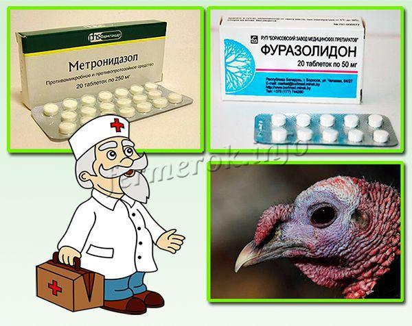 Самым эффективным от Гистомоноза является препарат «Метронидазол»