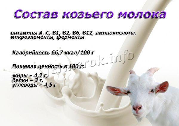 Состав козьего молока