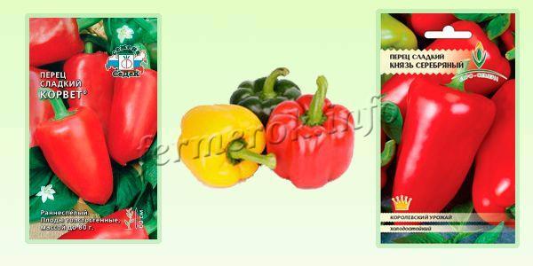 Урожайные сорта перца 2