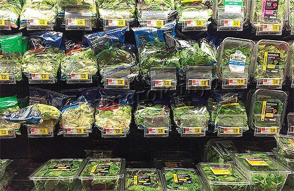 Выращивать для продажи можно любую зелень