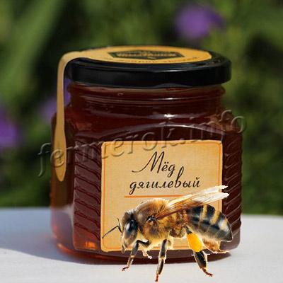 Фото дягилевого мёда